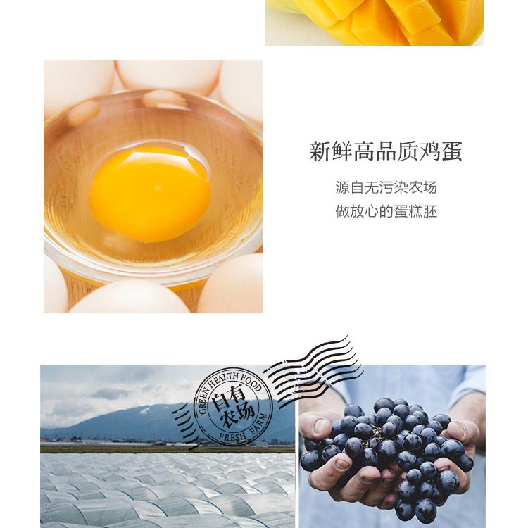 彩虹长颈鹿_05.jpg