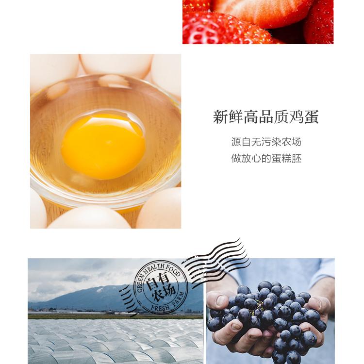 莓园春色_05.jpg